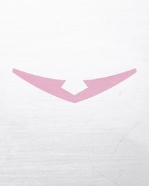 NerdLoveShop_PinkPaladin_8x10